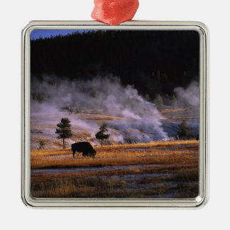 Bison grazing in the Upper Geyser Basin near Silver-Colored Square Decoration