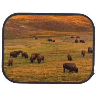 Bison Grazing on Hill at Hayden Valley Car Mat