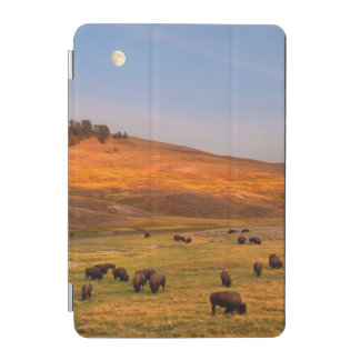 Bison Grazing on Hill at Hayden Valley iPad Mini Cover
