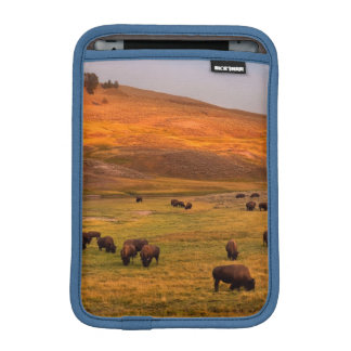 Bison Grazing on Hill at Hayden Valley iPad Mini Sleeve