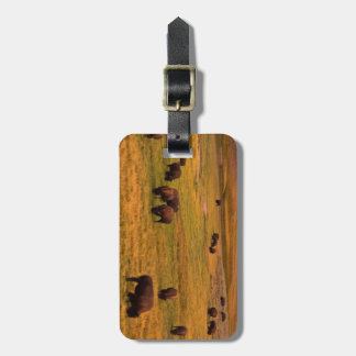 Bison Grazing on Hill at Hayden Valley Luggage Tag