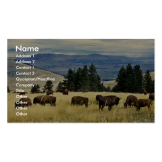 Bison herd grazing at the National Bison Range Business Card Template