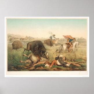Bison Hunt (0008A) Poster