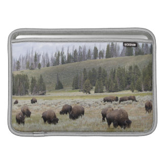 Bison in the Hayden Valley of Yellowstone Sleeve For MacBook Air