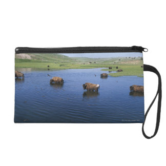 Bison In The Water With Numerous Cliff Swallows Wristlet