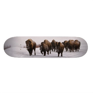 Bison in Winter 20 Cm Skateboard Deck