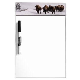 Bison in Winter Dry Erase Board