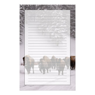 Bison in Winter Stationery