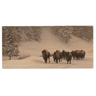 Bison in Winter Wood USB 2.0 Flash Drive