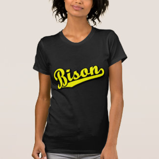 Bison in Yellow T-Shirt