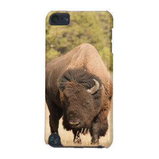 Bison iPod Touch 5G Cover