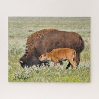 Bison Mama and Baby Design Puzzle
