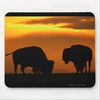 Bison Mouse Mat