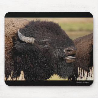 bison mouse pads