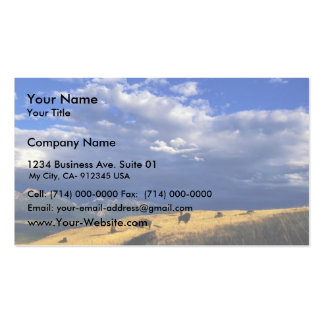 Bison out on the range business card template