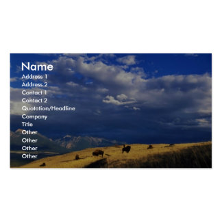 Bison out on the range business card templates