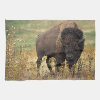 Bison photo tea towel