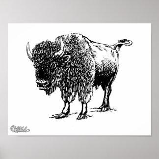 Bison Print