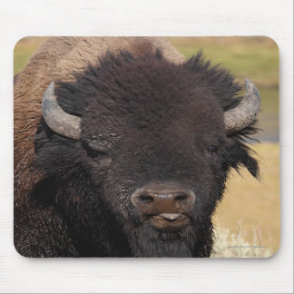 bison raspberry mouse pads