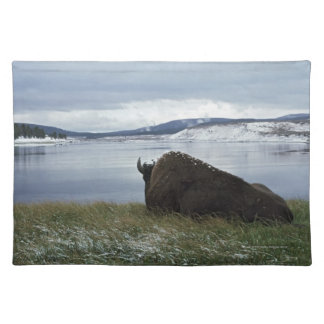 Bison Resting By Yellowstone River With Snow On Placemat