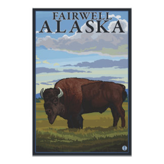 Bison Scene - Fairwell, Alaska Poster