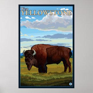 Bison Scene - West Yellowstone, Montana Poster