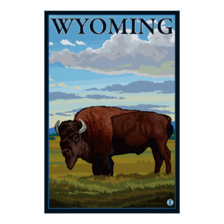 Bison Scene - Wyoming Poster