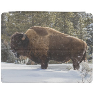 Bison standing in snow iPad cover