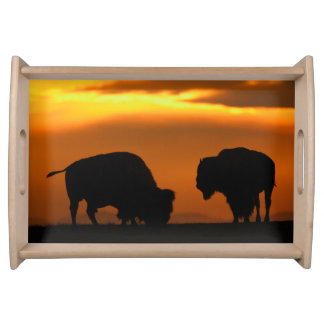 bison sunset serving tray