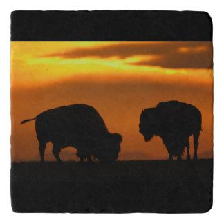Bison Sunset Trivet