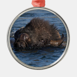 bison swimming christmas ornament