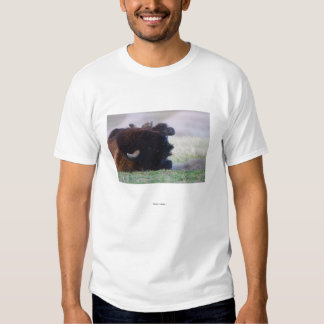 Bison Tee Shirts