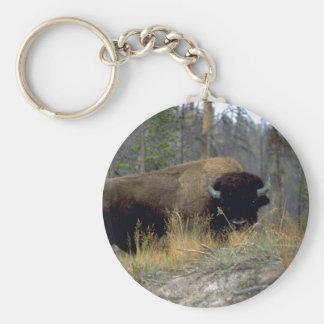Bison, Upper Geyser Basin, Yellowstone National Pa Basic Round Button Key Ring