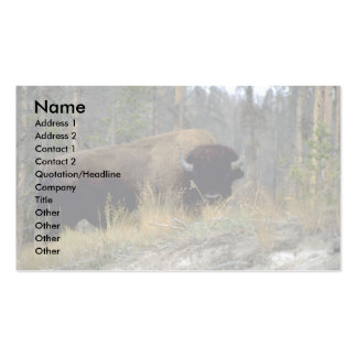 Bison, Upper Geyser Basin, Yellowstone National Pa Pack Of Standard Business Cards