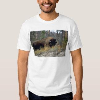 Bison, Upper Geyser Basin, Yellowstone National Pa Tee Shirts