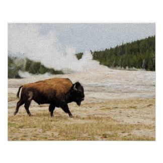 Bison with Old Faithful in Yellowstone Poster