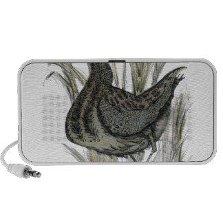 Bittern bird, tony fernandes iPod speakers
