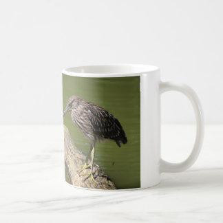 Bittern mug