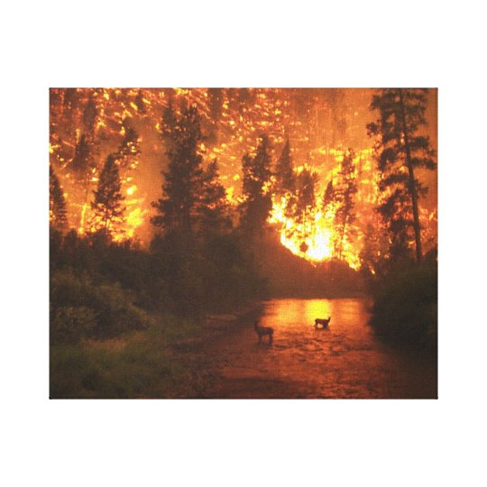 Bitterroot National Park Forest Fire Canvas Print