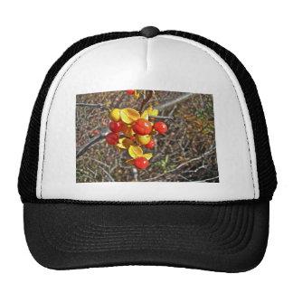 Bittersweet Vine Berries Items Trucker Hat