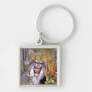 Bizarre 2 Cave-Eyes and Lion Kid's Fantasy Silver-Colored Square Key Ring