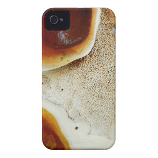 Bizarre nature - bright orange abstract texture iPhone 4 Case-Mate case