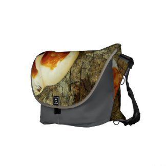 Bizarre nature - bright orange white tree fungi commuter bag