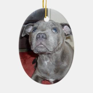 Bkue_Staffordshire_Bull_Teerier_Puppy, Ceramic Oval Decoration