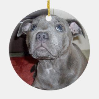 Bkue_Staffordshire_Bull_Teerier_Puppy, Round Ceramic Decoration