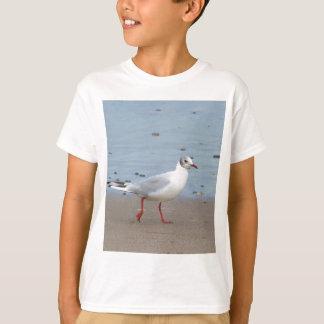 Blach headed gull T-Shirt