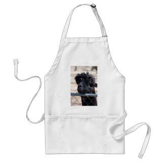 Black Adult Alpaca - Vicugna pacos Aprons