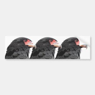 Black African Bateleur Eagle Car Bumper Sticker