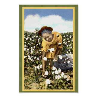 Black America Vintage Cotton Field Woman Poster