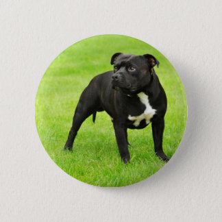 Black Amstaff 6 Cm Round Badge